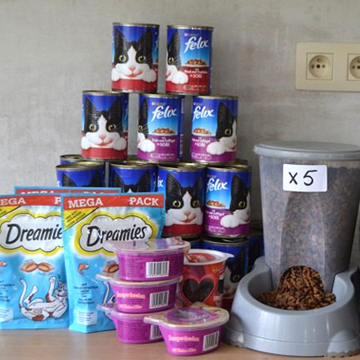 148_doneer kattenvoeding aan de poezen van het dierenthuisje